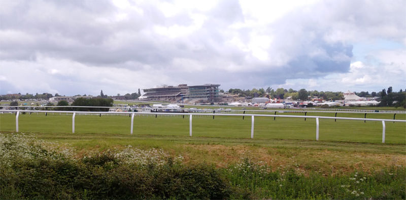Wychwood Festival at Cheltenham Racecourse